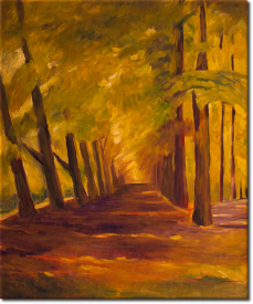 Allee in Overveen in 53x62cm